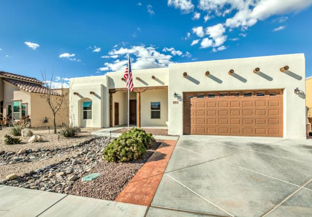 4661 Santa Minerva Avenue, Las Cruces, NM 88012 (MLS #1900802) :: Steinborn & Associates Real Estate