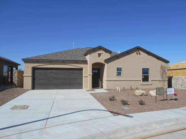 3077 Agua Ladoso, Las Cruces, NM 88012 (MLS #1900804) :: Steinborn & Associates Real Estate
