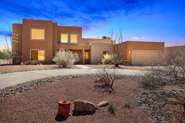 1492 Vista Del Cerro, Las Cruces, NM 88007 (MLS #1900809) :: Steinborn & Associates Real Estate