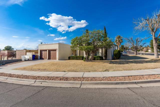 703 Stagecoach Drive, Las Cruces, NM 88011 (MLS #1900816) :: Arising Group Real Estate Associates