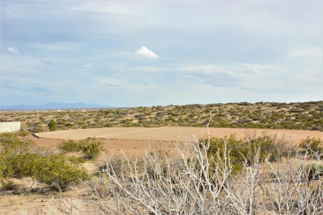 8124 Constitution Road, Las Cruces, NM 88007 (MLS #1900823) :: Arising Group Real Estate Associates