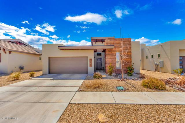 3660 Santa Adriana Avenue, Las Cruces, NM 88012 (MLS #1900831) :: Steinborn & Associates Real Estate