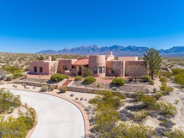 5521 Superstition Drive, Las Cruces, NM 88011 (MLS #1900836) :: Steinborn & Associates Real Estate