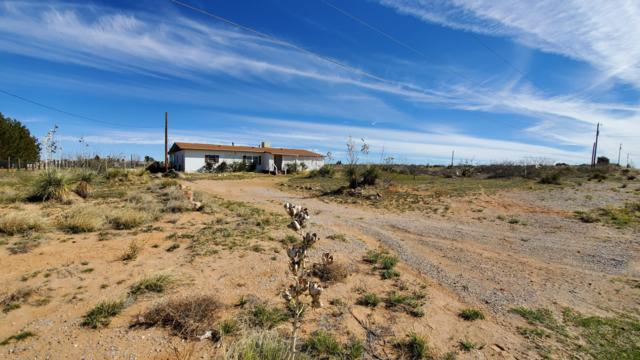 328 Luna Azul Drive, Chaparral, NM 88081 (MLS #1900843) :: Steinborn & Associates Real Estate