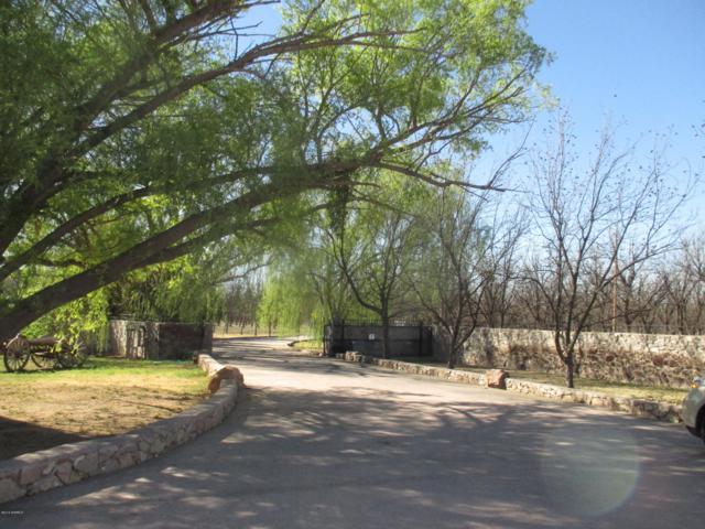 3851 Snow Road, Las Cruces, NM 88005 (MLS #1900850) :: Steinborn & Associates Real Estate