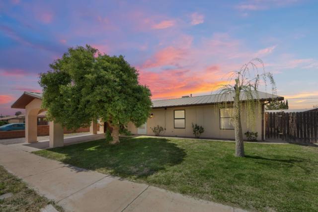 1312 S S. Sandburg Drive Drive, Deming, NM 88030 (MLS #1900865) :: Steinborn & Associates Real Estate