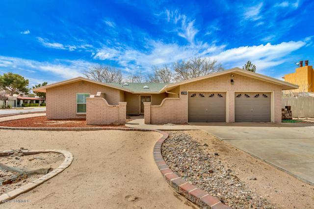 120 Sun Spirit Lane, Santa Teresa, NM 88008 (MLS #1900870) :: Steinborn & Associates Real Estate