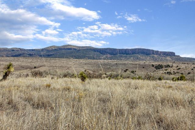 32 Mesa Trail, ARENAS VALLEY, NM 88022 (MLS #1900873) :: Steinborn & Associates Real Estate