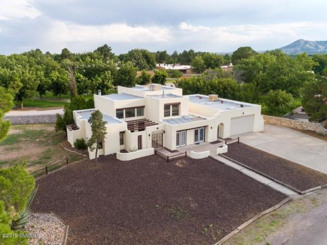 1435 Tierra Del Sol Drive, Las Cruces, NM 88007 (MLS #1900940) :: Steinborn & Associates Real Estate