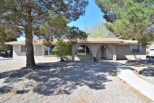 2801 Devendale Avenue, Las Cruces, NM 88005 (MLS #1900965) :: Steinborn & Associates Real Estate