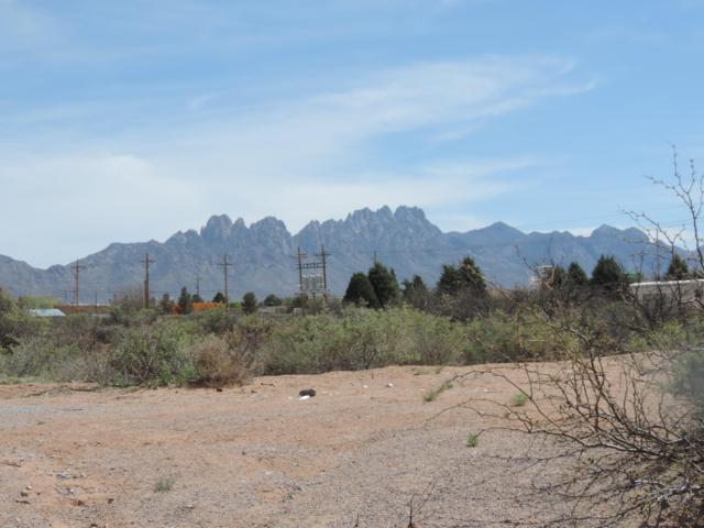 0000A Morningside Road, Las Cruces, NM 88012 (MLS #1900982) :: Steinborn & Associates Real Estate