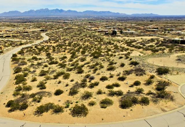 1290 Nicho Place, Las Cruces, NM 88007 (MLS #1900989) :: Steinborn & Associates Real Estate