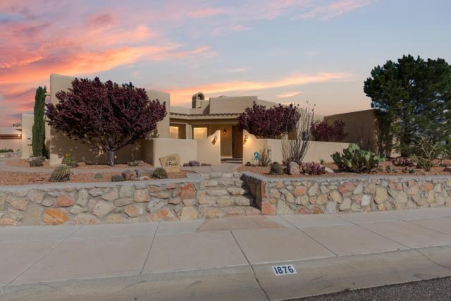 1876 El Presidio, Las Cruces, NM 88011 (MLS #1900995) :: Steinborn & Associates Real Estate