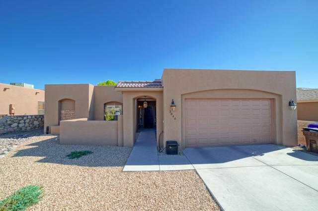 3840 Ringneck Drive, Las Cruces, NM 88001 (MLS #1901016) :: Steinborn & Associates Real Estate