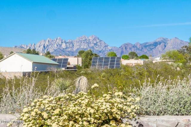 4165 Sotol Drive, Las Cruces, NM 88011 (MLS #1901030) :: Steinborn & Associates Real Estate