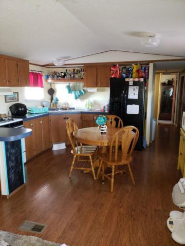 9790 Corralones Road, Las Cruces, NM 88007 (MLS #1901043) :: Steinborn & Associates Real Estate