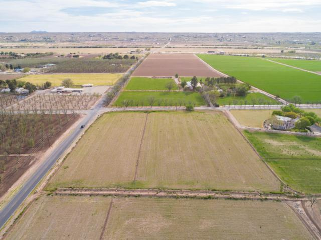 000 Snow Road, Mesilla, NM 88046 (MLS #1901069) :: Steinborn & Associates Real Estate