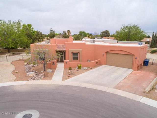 3866 Brook Haven Court, Las Cruces, NM 88005 (MLS #1901073) :: Steinborn & Associates Real Estate