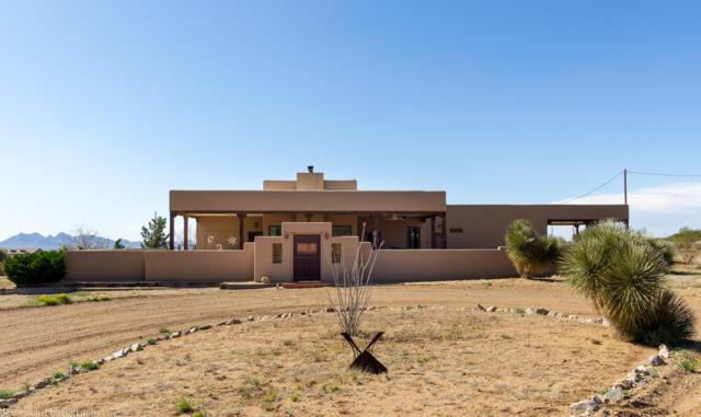 11375 Starfly Road, Las Cruces, NM 88011 (MLS #1901089) :: Arising Group Real Estate Associates