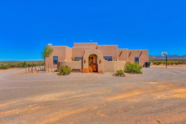 299 Vista Del Rey Road, Vado, NM 88072 (MLS #1901097) :: Steinborn & Associates Real Estate