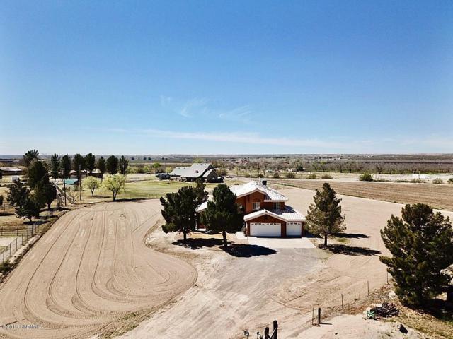 495 Wallace Road, Santa Teresa, NM 88008 (MLS #1901134) :: Steinborn & Associates Real Estate