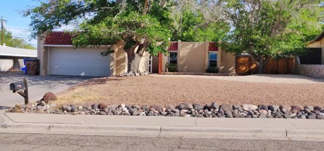 2720 Ardis Drive, Las Cruces, NM 88011 (MLS #1901142) :: Steinborn & Associates Real Estate