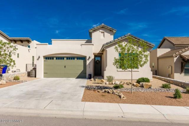 2820 Maddox Loop, Las Cruces, NM 88011 (MLS #1901144) :: Steinborn & Associates Real Estate