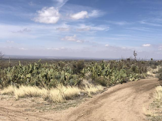 Lot 13-20 2nd Street, Organ, NM 88052 (MLS #1901151) :: Steinborn & Associates Real Estate