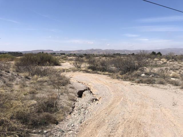 Lot 9 El Camino Real, Las Cruces, NM 88007 (MLS #1901152) :: Steinborn & Associates Real Estate