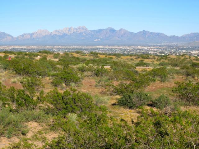 Lot 52 Madera Vieja Court, Las Cruces, NM 88007 (MLS #1901156) :: Steinborn & Associates Real Estate