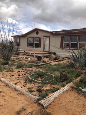 2160 Hot Peppers Road, Chaparral, NM 88081 (MLS #1901207) :: Steinborn & Associates Real Estate