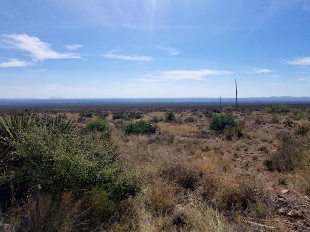 000 Pena Blanca Loop, Las Cruces, NM 88012 (MLS #1901208) :: Steinborn & Associates Real Estate