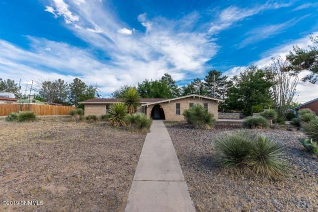 3010 Broadmoor Drive, Las Cruces, NM 88001 (MLS #1901218) :: Steinborn & Associates Real Estate