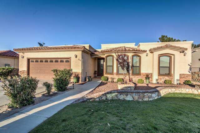 132 Apache Brave Street, Santa Teresa, NM 88008 (MLS #1901227) :: Steinborn & Associates Real Estate