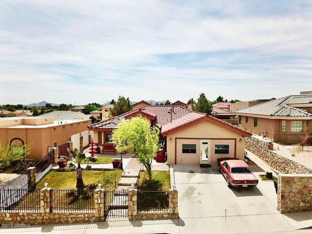179 Osprey Court, Santa Teresa, NM 88008 (MLS #1901243) :: Steinborn & Associates Real Estate