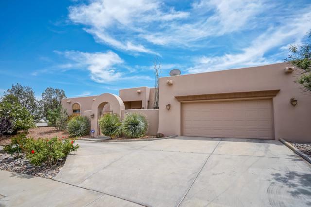 6887 Via Emma, Las Cruces, NM 88007 (MLS #1901256) :: Arising Group Real Estate Associates