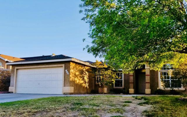 714 Horizon View Drive, Las Cruces, NM 88011 (MLS #1901258) :: Steinborn & Associates Real Estate