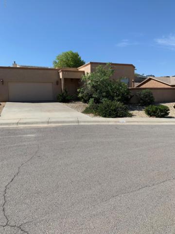 2983 Long Bow Loop, Las Cruces, NM 88011 (MLS #1901270) :: Steinborn & Associates Real Estate