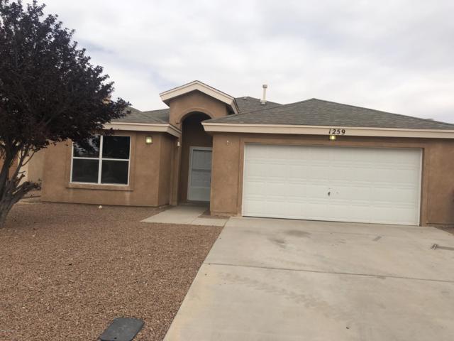 1259 Fountain Loop, Las Cruces, NM 88007 (MLS #1901283) :: Steinborn & Associates Real Estate