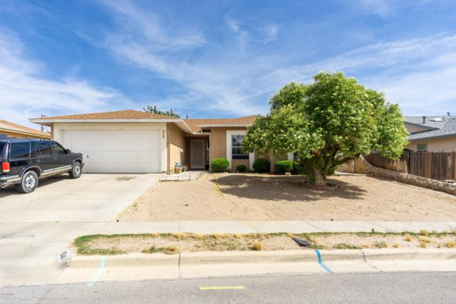 1014 Heather Circle, Las Cruces, NM 88005 (MLS #1901285) :: Steinborn & Associates Real Estate