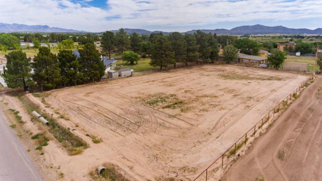 1190 Boundary Street, Anthony, NM 88021 (MLS #1901300) :: Steinborn & Associates Real Estate