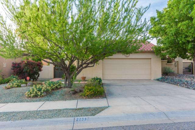 2239 Los Misioneros, Las Cruces, NM 88011 (MLS #1901307) :: Steinborn & Associates Real Estate