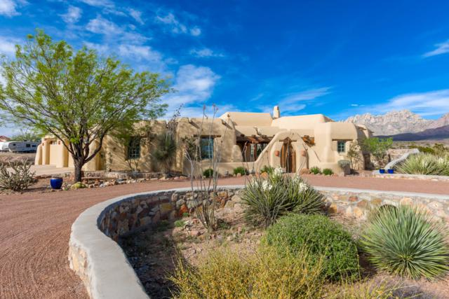 3907 Quail Brush Court, Las Cruces, NM 88011 (MLS #1901335) :: Steinborn & Associates Real Estate