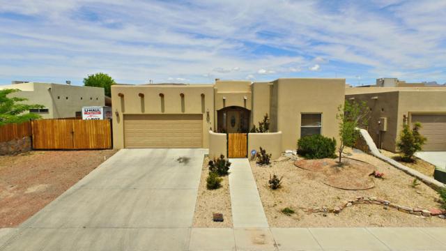 3314 Valverde Loop, Las Cruces, NM 88012 (MLS #1901337) :: Steinborn & Associates Real Estate