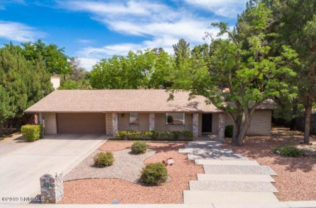 921 Raleigh Road, Las Cruces, NM 88005 (MLS #1901341) :: Steinborn & Associates Real Estate