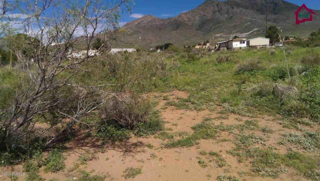 00 Mayfly, Las Cruces, NM 88011 (MLS #1901343) :: Steinborn & Associates Real Estate