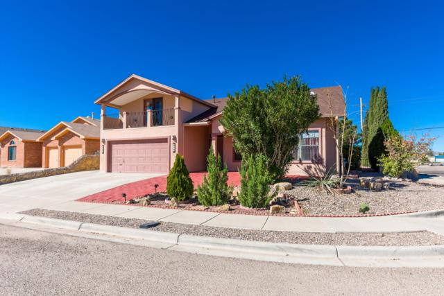 2093 Reina Drive, Las Cruces, NM 88007 (MLS #1901348) :: Steinborn & Associates Real Estate