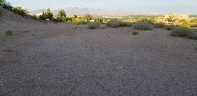 TBD Larkspur Way, Las Cruces, NM 88007 (MLS #1901368) :: Steinborn & Associates Real Estate