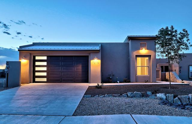 7010 Camino Nuevo Mejico, Las Cruces, NM 88007 (MLS #1901373) :: Steinborn & Associates Real Estate