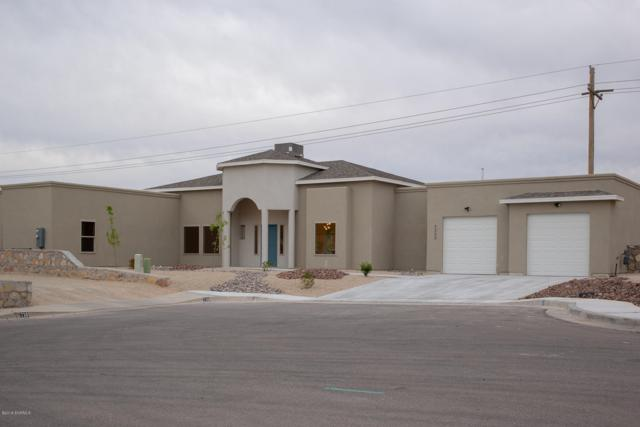 7309 Vista De Sobre Drive, Las Cruces, NM 88012 (MLS #1901378) :: Steinborn & Associates Real Estate